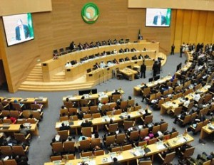 African leaders are set to decide on including immunity for heads of state in a proposed expansion of the African Court. © AFP