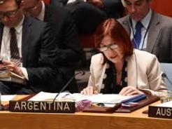 Argentina's ambassador to the UN speaks during a Security Council meeting. © STAN HONDA/AFP/Getty Images