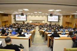 The plenary meets during the final day of the 13th ASP session. © CICC/Gabriella Chamberland