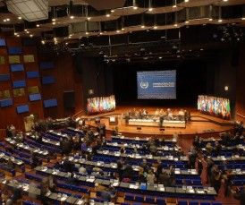 Important decisions about the ICC are made at the annual meeting of the ASP. © CICC
