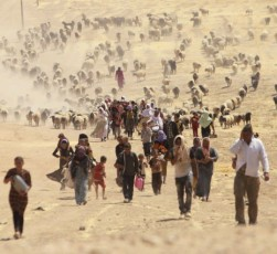 Displaced Yazidi people flee from ISIS in Iraq. © Rodi Sai / Reuters