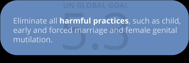 global goal 5.3